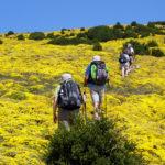 Les activités sports et loisirs dans les Pyrénées