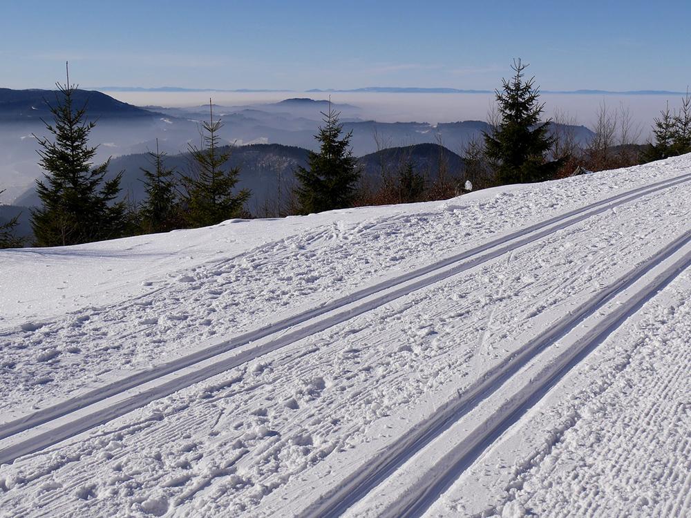 activite-ski-de-fond
