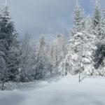 Les bulletins d'enneigement des stations des Pyrénées