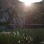 L' Étang d'Arbu - Ariège - Vicdessos - Massif des Trois Seigneurs
