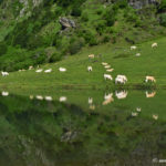 Le lac d'Estaing - Hautes-Pyrénées - Val d'Azun - Vallée d'Estaing